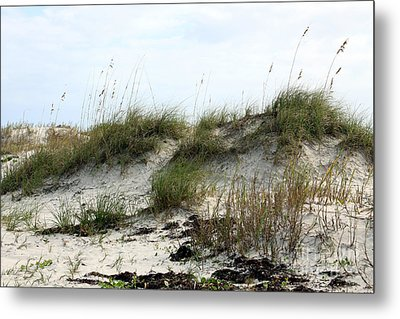 Metal Print featuring the photograph Beach Dune by Chris Thomas
