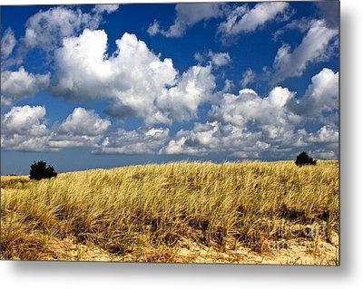 Metal Print featuring the photograph Beach Dunes by Amazing Jules