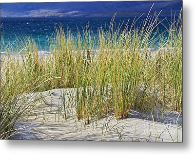 Beach Gras Metal Print by Juergen Klust