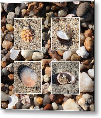 Beach Shells And Rocks Collage Metal Print