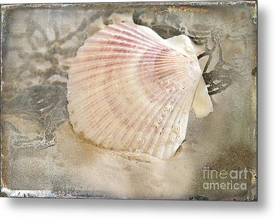 Beached Metal Print by Betty LaRue