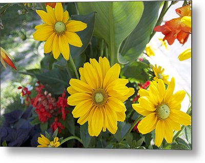 Beauty Flowers Metal Print by Jocelyne Choquette