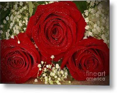 Beauty Of Roses Metal Print by Inspired Nature Photography Fine Art Photography