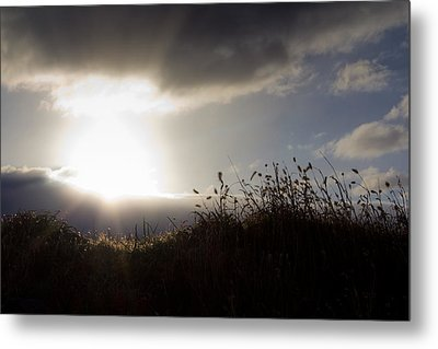 Beyond The Morning Metal Print