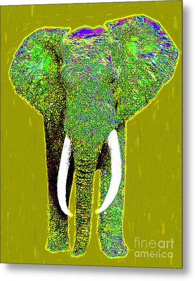 Big Elephant 20130201p60 Metal Print by Wingsdomain Art and Photography