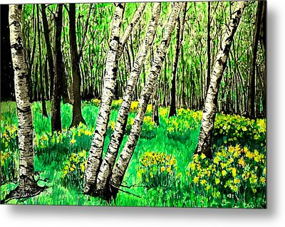 Birch Trees In Spring Metal Print by Diane Merkle