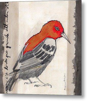 Bird 17 Metal Print by Marco Sivieri