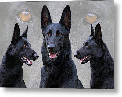 Black German Shepherd Dog Collage Metal Print by Sandy Keeton