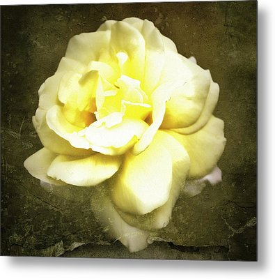 Bloom In Full Metal Print by Cathie Tyler