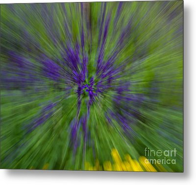 Metal Print featuring the photograph Blue Floral Blur by Dale Nelson