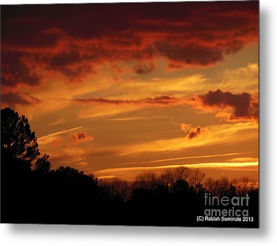 Blue Horse Sunset Metal Print by Rabiah Seminole