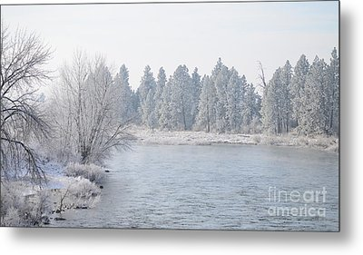 Blue Tint Metal Print by Greg Patzer