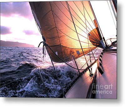 Boats Wing  Metal Print by Boon Mee