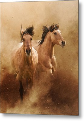 Born From Dust Metal Print by Ron  McGinnis