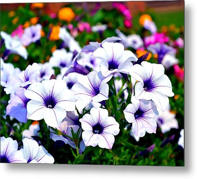 Metal Print featuring the photograph Botanical Medley by Deena Stoddard