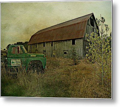 Broken Things To Mend  Metal Print by Dianne  Lacourciere
