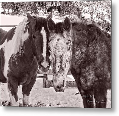 Buddies In Snow Metal Print by Denise Romano
