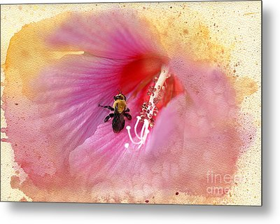 Bumble Bee Bliss Metal Print by Betty LaRue