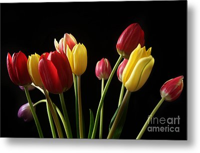 Bunch Of Tulips Metal Print by Eden Baed