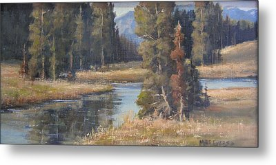 Burnished Meadow Metal Print