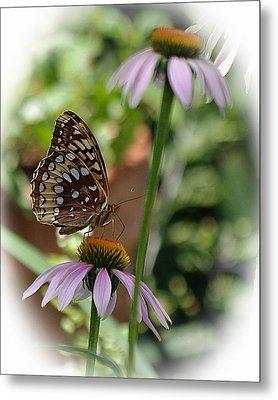 Butterfly Time Metal Print by Karen McKenzie McAdoo