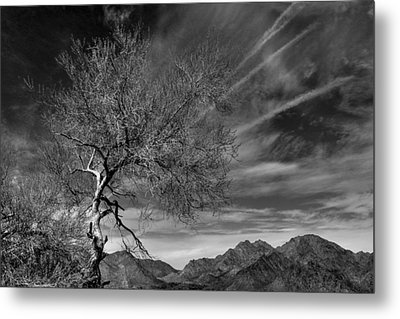 Metal Print featuring the photograph California Landscape 1 by Jim Vance