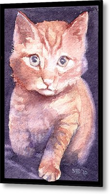 Callie's Cats Metal Print by Sarah Buell  Dowling