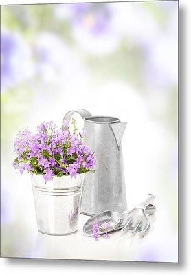 Campanula Flowers Metal Print