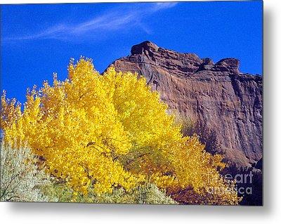 Canyon De Chelly Autumn    Metal Print by Douglas Taylor