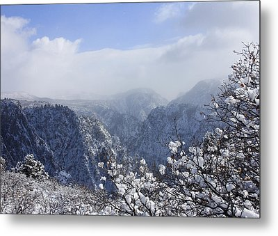 Canyon Mist Metal Print by Marta Alfred