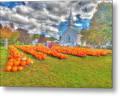Cape Cod Americana   Fall Bounty On Cape Cod  Metal Print by Constantine Gregory