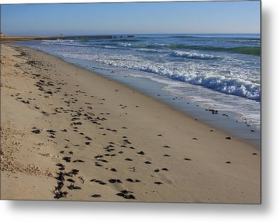 Cape Hatteras - Mermaid's Purse Laiden Beach Metal Print by Mountains to the Sea Photo