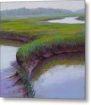 Cape Morning Metal Print by Ed Chesnovitch