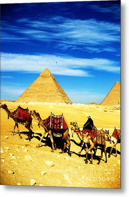 Caravan Of Camels 2 Metal Print by Alison Tomich