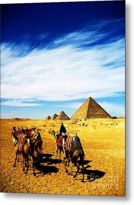 Caravan Of Camels Metal Print by Alison Tomich