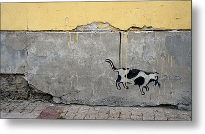 Cat Metal Print by Kees Colijn
