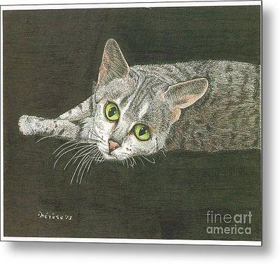 Cat On Black Metal Print