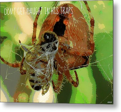 Caught Metal Print by Heidi Manly