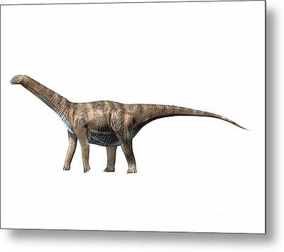 Cetiosaurus Oxoniensis, Middle Jurassic Metal Print by Nobumichi Tamura