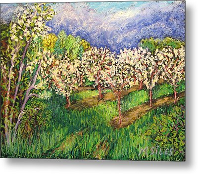 Cherry Orchard Glow Metal Print by Madonna Siles