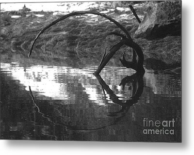 Metal Print featuring the photograph Circle And Heart by Cynthia Lagoudakis