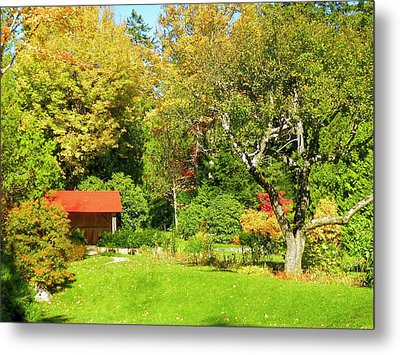 Metal Print featuring the photograph Coastal Garden by Gene Cyr
