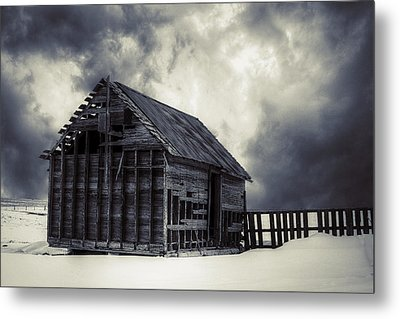 Cold - Bw Metal Print by Thomas Zimmerman