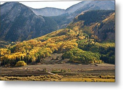 Metal Print featuring the photograph Colorado Changing Eleven   by Eric Rundle