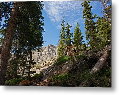 Colorado Mountain Hike Metal Print by Michael J Bauer