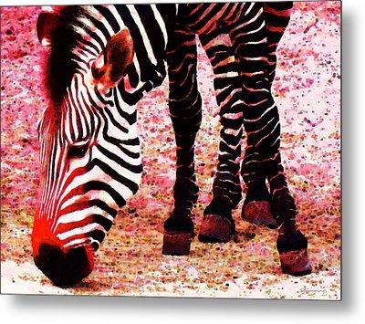 Colorful Zebra - Buy Black And White Stripes Art Metal Print by Sharon Cummings