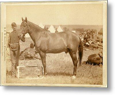 Comanche, The Only Survivor Of The Custer Massacre Metal Print