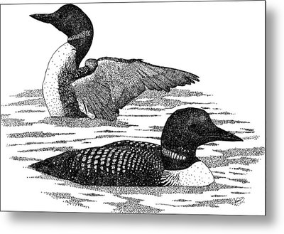 Common Loons Metal Print