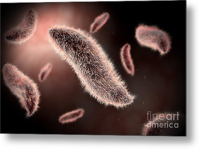 Conceptual Image Of Paramecium Metal Print by Stocktrek Images