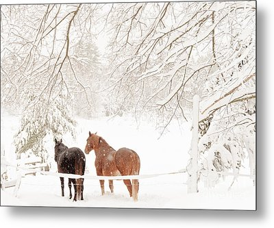 Country Snow Metal Print by Cheryl Baxter